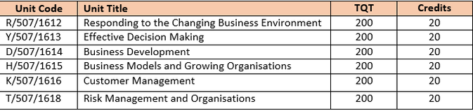 Undergraduate Year 2 Level 5 Diploma In Business Management