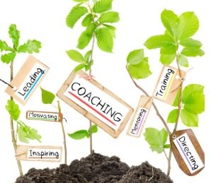 Certificate in Coaching and Mentoring